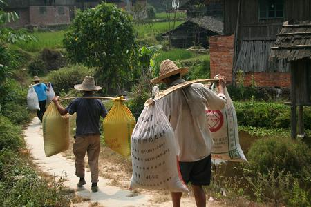 farmers_carrying_rice