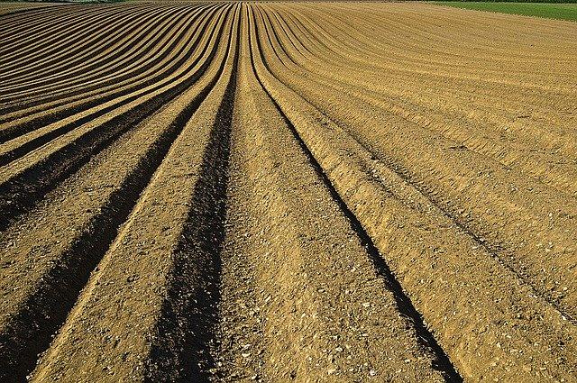 crop-1149914_640
