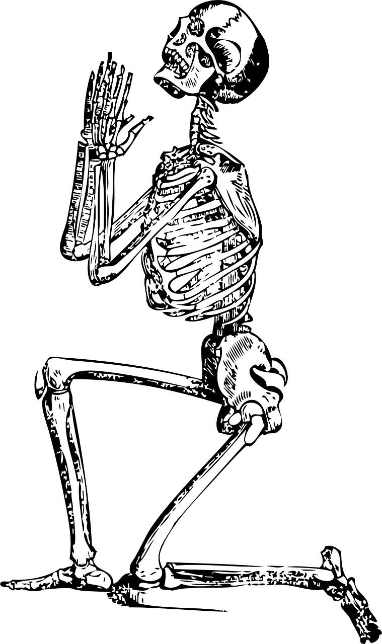 skeleton-33847_1280