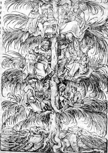 Ständebaum