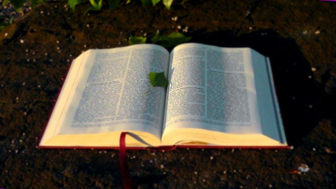 bible-138977_1280